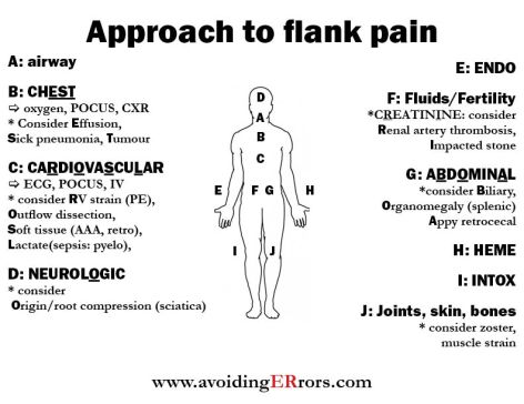 approach to flank pain |, Skeleton